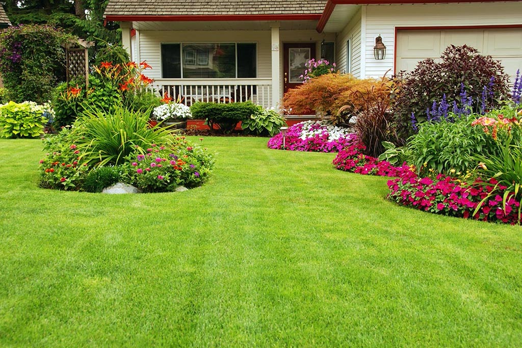 15 Easy Tips To Spruce Up Your Homes Curb Apeal