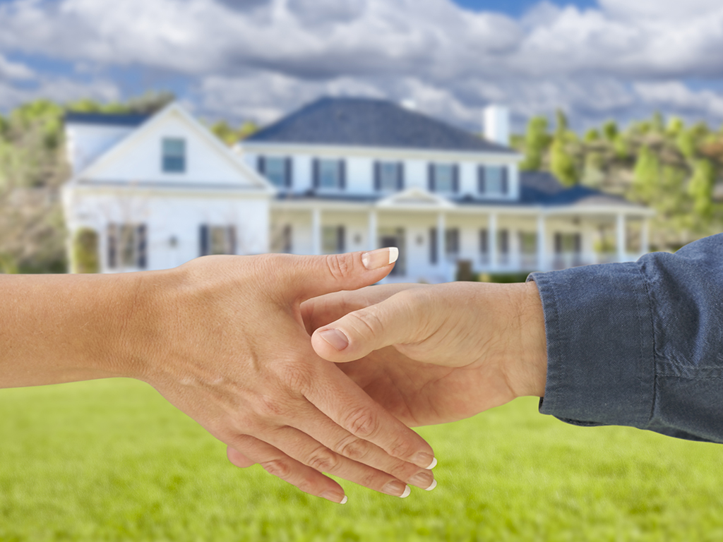 Our Practical Guide to Negotiating in a Seller's Market